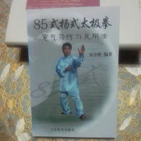 库存 85式杨氏太极拳意气势练习及用法