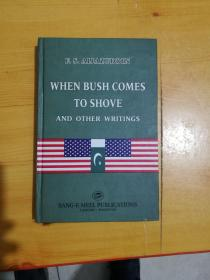 WHEN BUSH COMES TO SHOVE AND OTHER WRITINGS【当布什谈到推和其他作品时】