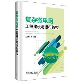 复杂微电网工程建设与运行管控