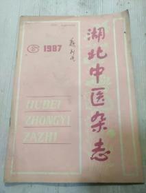湖北中医杂志     1987年第6期