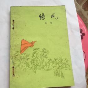 正版现货 绿风 杨啸 著 人民文学出版社出版 图是实物
