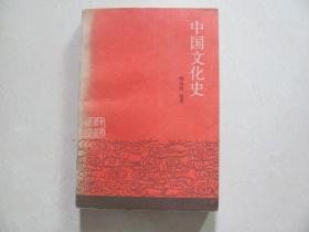中国文化史 下