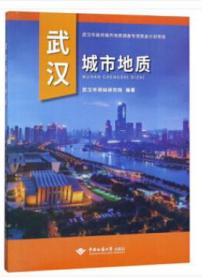 武汉城市地质 9787562544203 武汉市测绘研究院 中国地质大学出版社