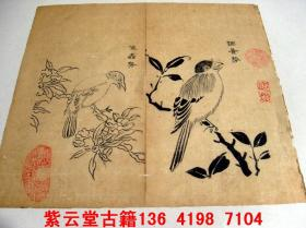 明;芥子园画谱(调音鸟)原始手稿    #3730