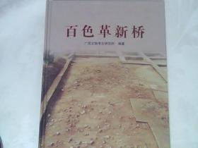 百色革新桥【广西文物考古研究所 编 】