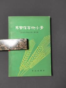 东官庄旱地小麦