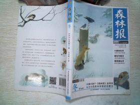 森林报·冬(美绘全译本)