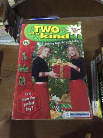 The Perfect Gift (Two of a Kind, 26)---[ID:122642][%#358D3%#]