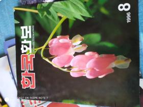 韩国画册(纯韩语或朝语)1996.8