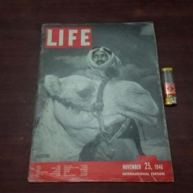 原版英文杂志:美国生活周刊(1946年11月25)(民国时期8开老期刊)(LIFE)