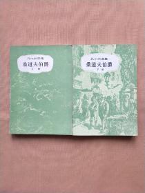 凡尔纳选集:桑道夫伯爵 上下 全二册 插图本