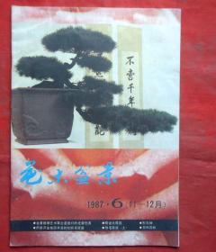 花木盆景  1997年6期  11-12月