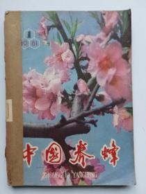 中国养蜂(1981年1一6期)合售