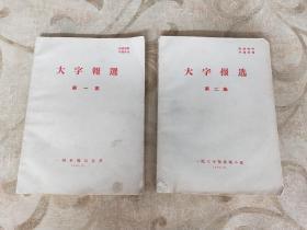 大字报选第一集+大字报选第二集 两册合售