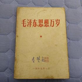 毛泽东思想万岁   内部文件