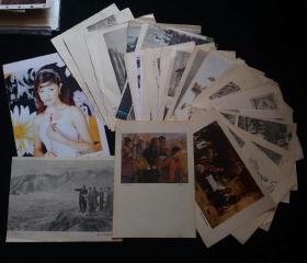 五十年代、六七十年代美术画册各种散页画近三十张大量名家画作