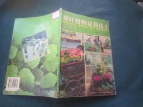 观叶植物盆栽技术