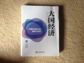 大国经济:中国市场经济的理性与选择