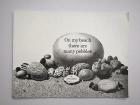 名家李欧李奥尼On My Beach There Are Many Pebbles英文原版绘本