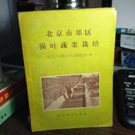 北京市郊区阳畦蔬菜栽培(书后几页缝有损坏)