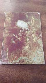 吉林省陆地卫星影像图集