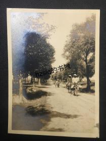 民国秦皇岛乡间小路上骑着毛驴的当地百姓及周边景象,日军侵占华北时拍摄、尺寸15x11cm