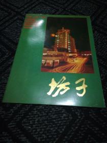 中国山东潍坊(宣传画册)