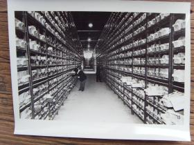 """1982年,大庆油田""""岩芯资料中心"""" 在大庆科学研究设计院建成"""