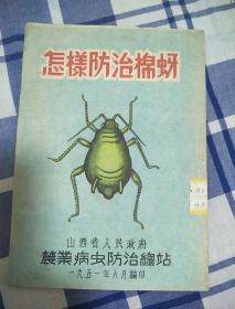 怎样防治棉蚜