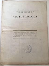journal of protozoology(1961年原生动物学杂志)