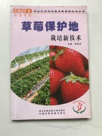 草莓保护地栽培新技术