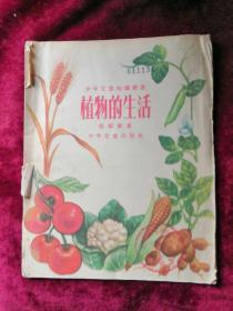 植物的生活 55年版 包邮挂刷