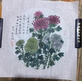 赵家书国画菊花一幅 50X50