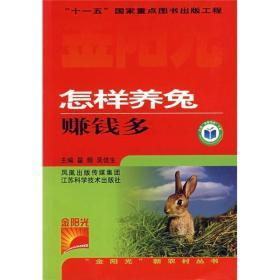 怎样养兔赚钱多