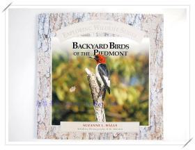 探索野生动物系列之后院鸟Backyard Birds of the Piedmont 英文原版