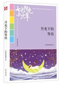 七色阳光小少年(全国小学生校园美文精品集萃丛书):月光下的等待