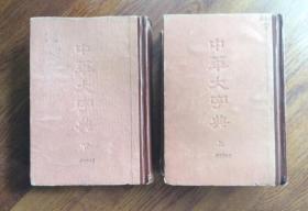 中华大字典 (上·下卷)