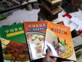 中国淮扬菜. 新潮菜+宴席菜+家常菜 3本  差不多九品    厨3