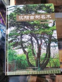 沈阳古树名木 精装
