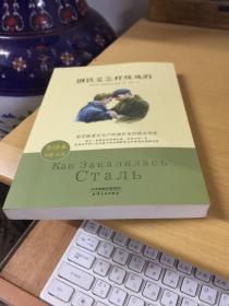 钢铁是怎样炼成的 全译本经典名著 教育部语文新课标必读推荐丛书