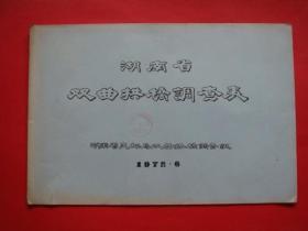 湖南省双曲拱桥调查表