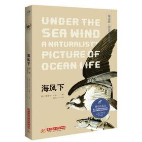 博物图鉴版--海风下