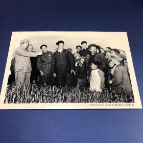 【老照片】1958年3月毛泽东视察四川郫县(卖家不懂照片,买家自鉴,售出不退)