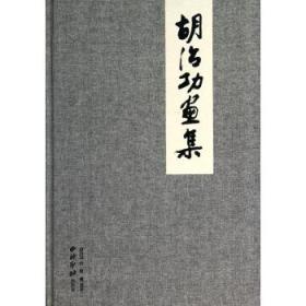 胡治功画集 正版 彭德  9787550810716