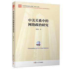 中美关系中的网络政治研究