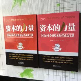 资本的时代系列资本的力量:中国企业全球资本运营成功宝典