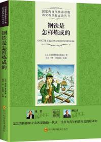 钢铁是怎样炼成的 海明威 四川科学技术出版社 9787536487642