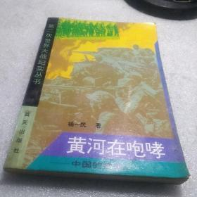 黄河在咆哮:中国的抗战