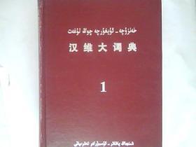 汉维大词典 【一.二】全两册