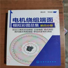 电机绕组端面模拟彩图总集.第四分册9787122250537